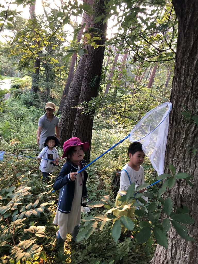 雑木林でカブトムシ採集する子供たち
