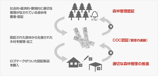 FSC COC認証取得(森を守る認証制度)環境や生物多様性、地域社会・経済を守りたい
