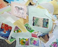 写真:集められた切手