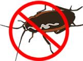 断熱材「セルロースファイバー」の特徴⑤防虫・防カビ性能