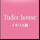 イギリス調 / TudorHouse