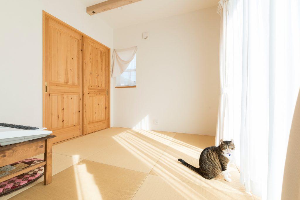 何かと便利で使いやすく、猫も日向ぼっこする4.5畳の明るい和室