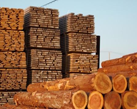 jwpの国際基準では、建築に使用する木材の70%以上を認証材とした住宅を「jwp森林認証の家」としています。