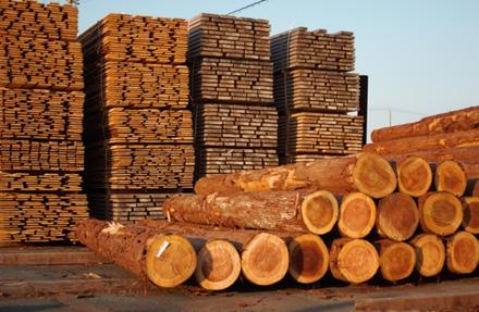 県森林組合連合会檜の県内出荷量 11,250㎥