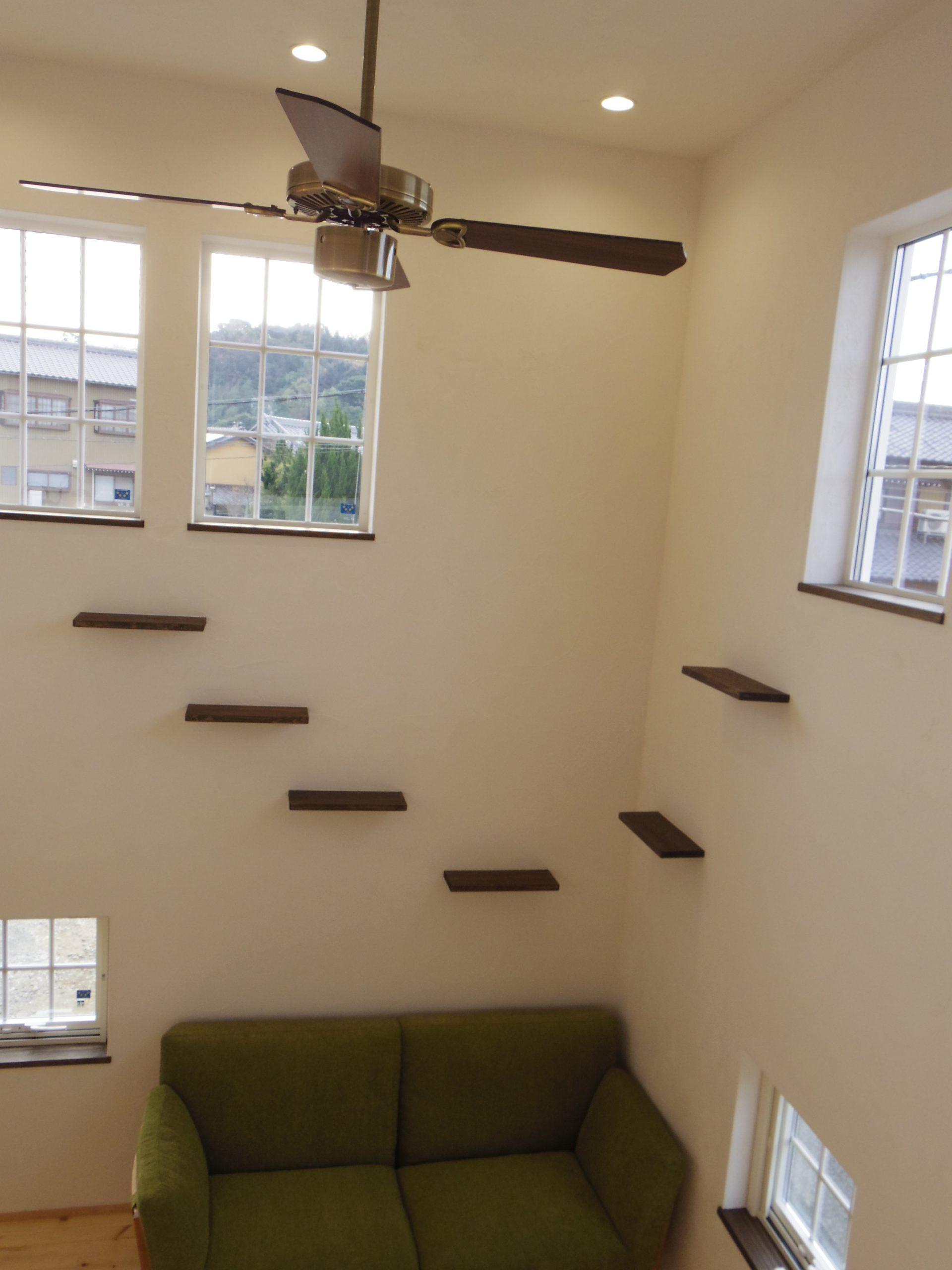 壁に設けたネコ棚