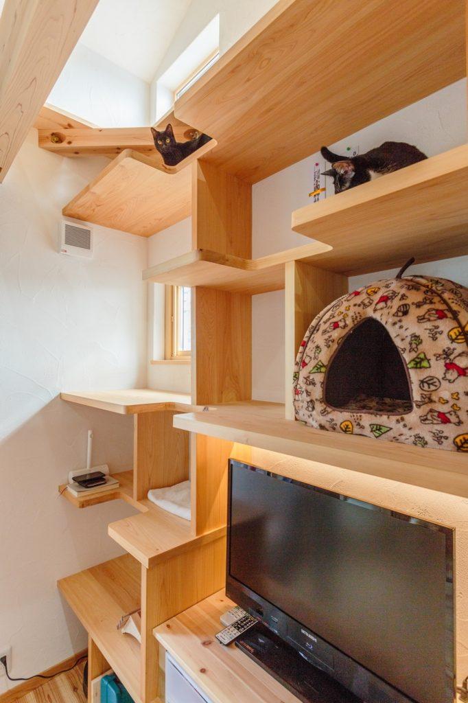 猫棚も兼ねている壁一面の造作収納棚