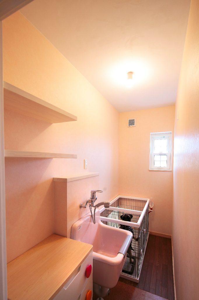 愛犬サスケ君の個室はシャワー完備。 漆喰の塗り壁のおかげで臭いもこもりません。