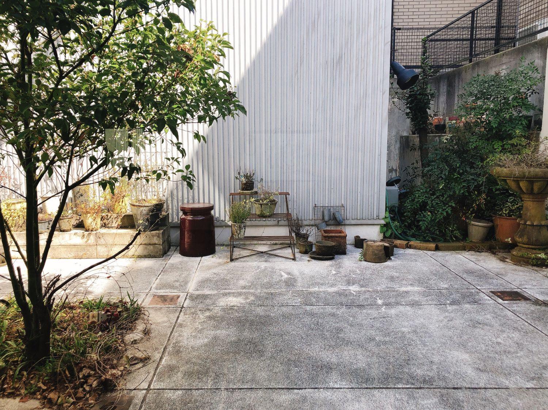 緑のある庭