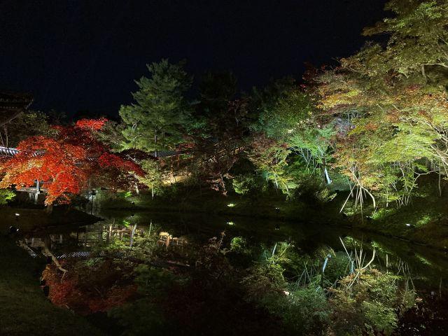 高台寺 夜景