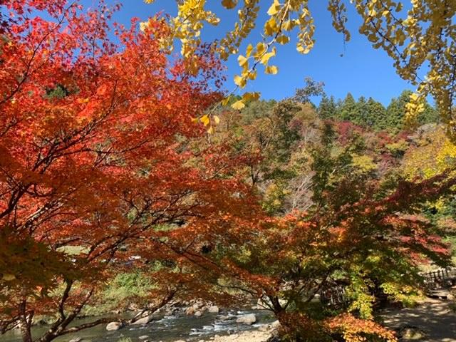 香嵐渓の景色