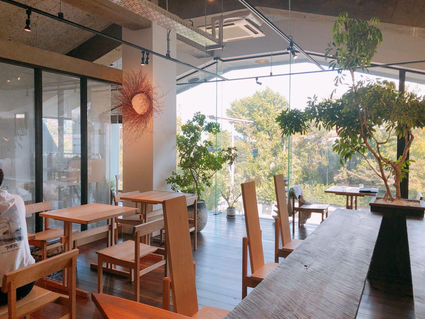 緑の見えるカフェ