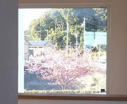 ウィンドウピクチャーで見えるサクラの木