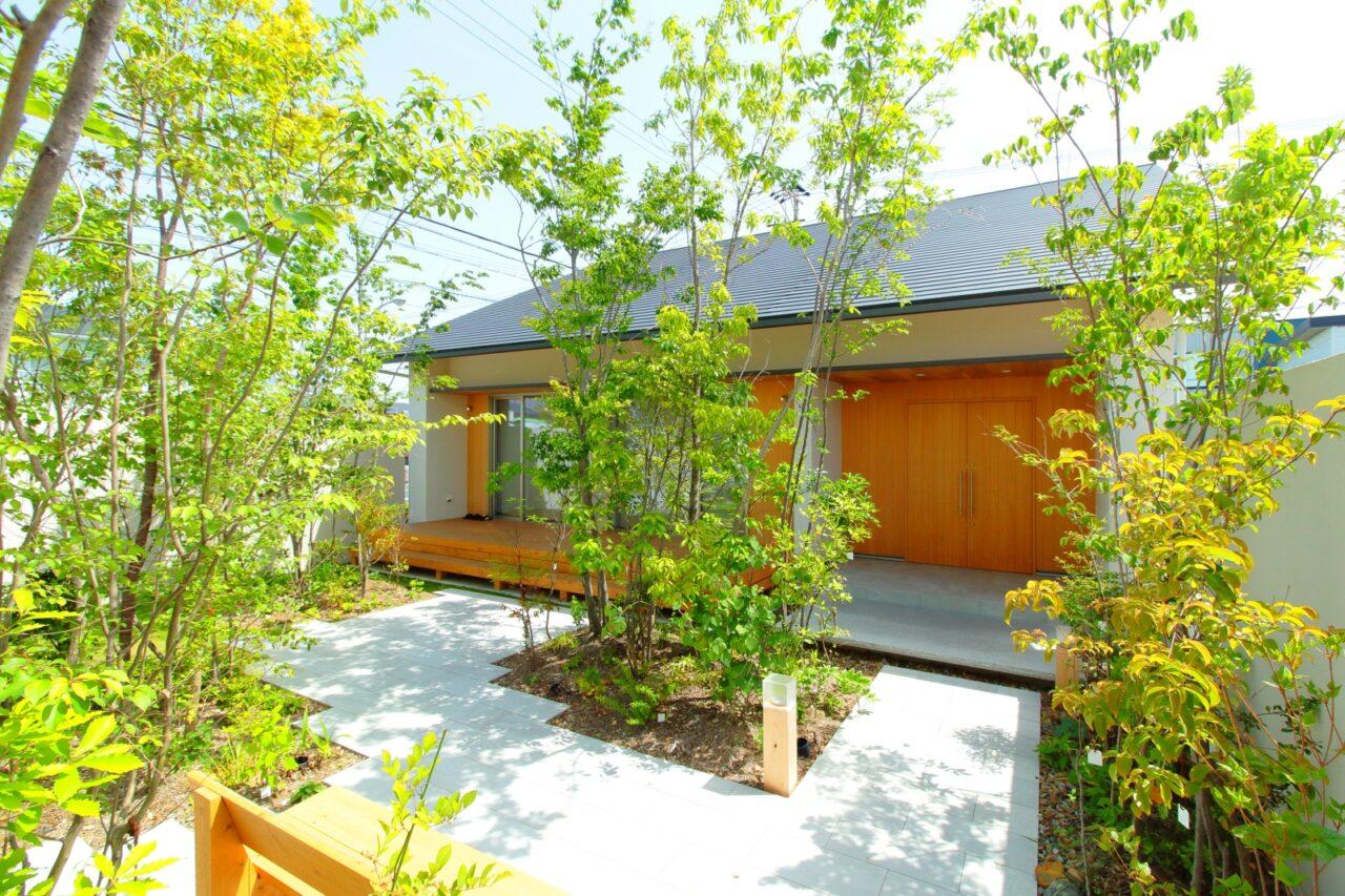 緑と暮らす 無垢と漆喰の家