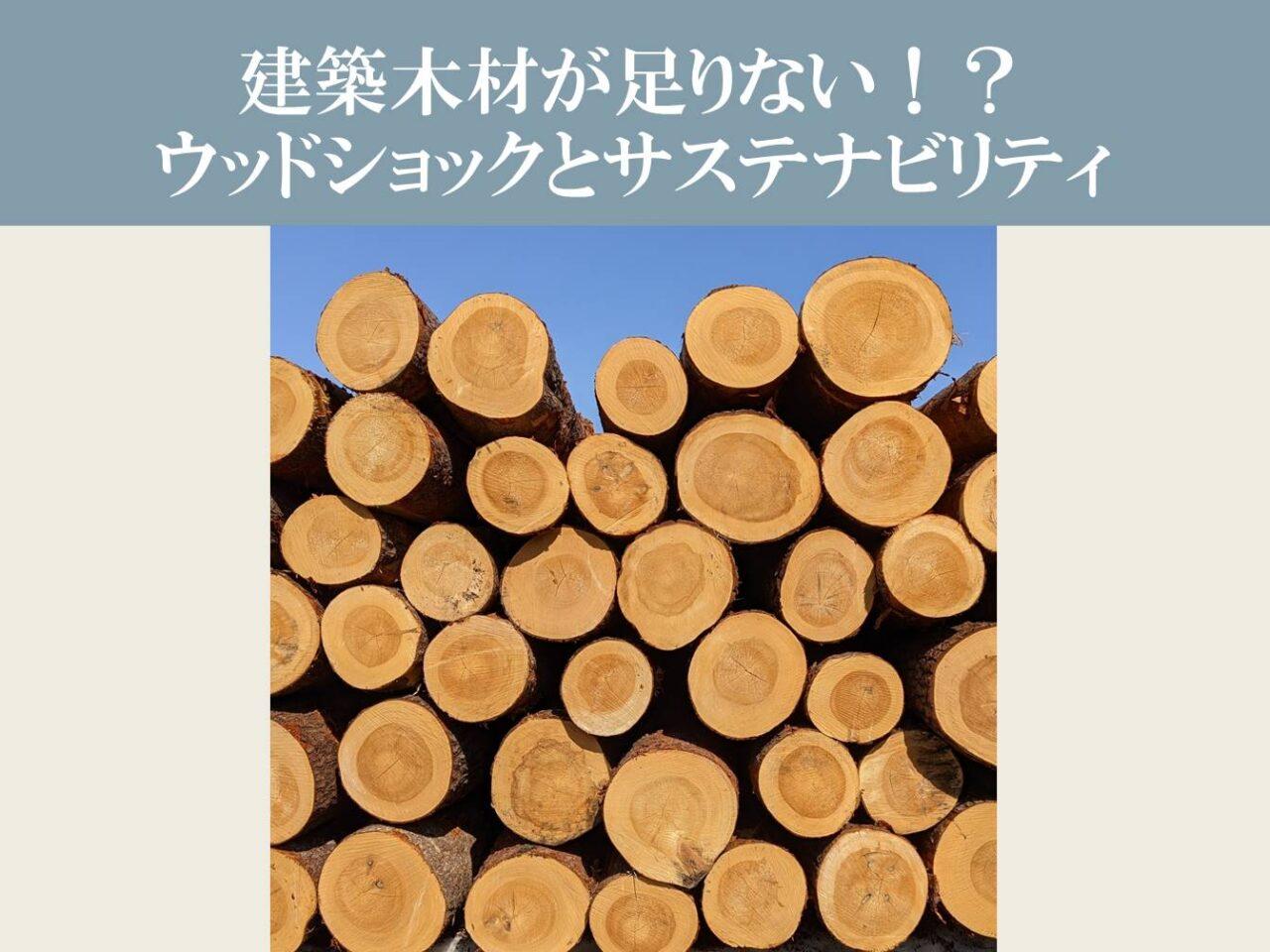 建築木材が足りない!?ウッドショックとサステナビリティ