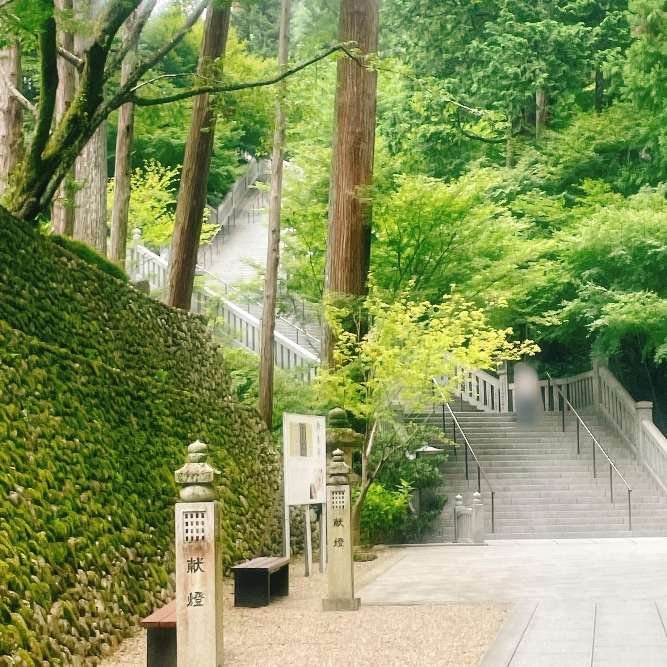 法多山 階段の様子