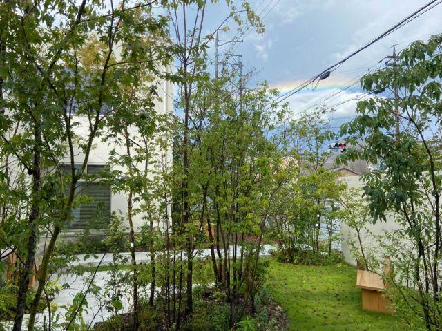 エモトープ虹